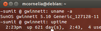 "Solaris 10 x86 server named ""gwinnett"" uptime"
